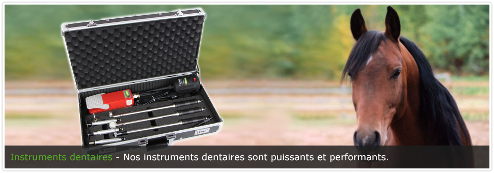 instruments_dentaires